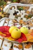 Mogna gröna äpplen i trädgården, hösttid Arkivfoton