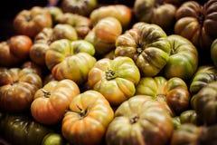 Mogna gröna tomater på marknaden royaltyfria bilder