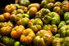 Mogna gröna tomater på marknaden royaltyfria foton