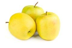 Mogna gula äpplen på en vit bakgrund Arkivfoto