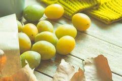 Mogna gula genomskinliga plommoner i den pappers- påsen för det bruna hantverket spridd på den Wood tabellen torkar Autumn Leaves Fotografering för Bildbyråer