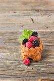 Mogna hallon med björnbäret i en korg Arkivfoto