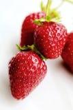 mogna jordgubbar Royaltyfri Bild