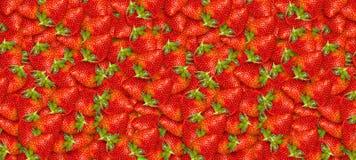 Mogna jordgubbar close upp nya frukter skivad half ananas f?r bakgrundssnittfrukt Sommarparti F?delsedag vektor illustrationer