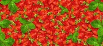 Mogna jordgubbar close upp nya frukter skivad half ananas f?r bakgrundssnittfrukt Sommarparti F?delsedag stock illustrationer