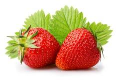 Mogna jordgubbar med sidor som isoleras på en vit Royaltyfri Fotografi
