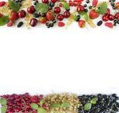 Mogna jordgubbar, redcurrants, svart vinbär, mullbärsträd, hallon och körsbär på vit bakgrund Royaltyfri Foto