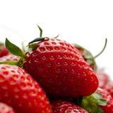 Mogna jordgubbar som isoleras på vit - nära övre - fyrkantig sammansättning royaltyfri foto