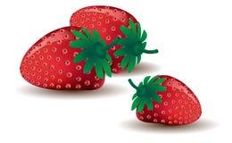 mogna jordgubbar tre Royaltyfri Bild
