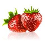 mogna jordgubbar två Royaltyfri Fotografi