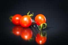 Mogna körsbärsröda tomater Royaltyfri Foto