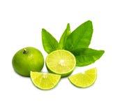 Mogna limefrukter med det gröna bladet bakgrund isolerad white Fotografering för Bildbyråer
