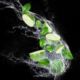 Mogna limefrukter med vattenfärgstänk Royaltyfria Bilder