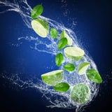 Mogna limefrukter med vattenfärgstänk Arkivfoto