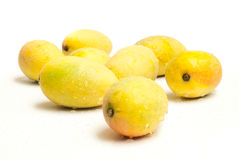 Mogna mango Arkivfoto