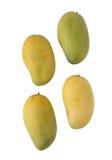 Mogna mango som isoleras på vit bakgrund arkivfoto