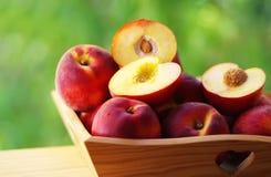Mogna nektariner och persikor på korg Arkivbild