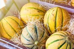 Mogna nya melon boxas på en bondemarknad Selektiv fokus med solljus Royaltyfri Fotografi