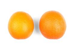 Mogna, nya och saftiga apelsiner, på en vit bakgrund Citrusfrukter närbild tropiska exotiska frukter Arkivbilder