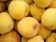 Mogna nya persikor Arkivfoto