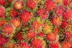 Mogna och nya Rambutans från marknaden, saftig tropisk smak a royaltyfri foto