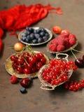 Mogna organiska blandningbär Arkivbild