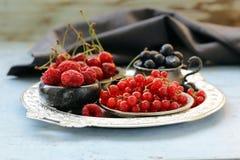 Mogna organiska blandningbär Royaltyfria Foton