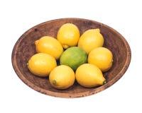 Mogna organiska limefrukter och citroner Royaltyfri Fotografi