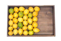 Mogna organiska limefrukter och citroner Royaltyfri Bild