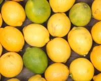 Mogna organiska limefrukter och citroner Fotografering för Bildbyråer