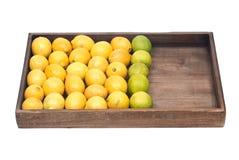 Mogna organiska limefrukter och citroner Royaltyfria Foton