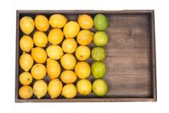 Mogna organiska limefrukter och citroner Arkivbilder