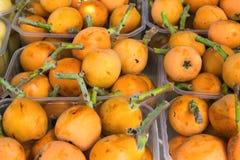 Mogna organiska livliga orange mispel i askar på bondemarknaden i Spanien Ljusa vibrerande livliga färger VitaminSuperfoods skörd Royaltyfri Fotografi