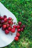 Mogna organiska nytt valda söta körsbär i Straw Hat Scattered på grönt gräs i trädgård mot bakgrund field blåa oklarheter för grö arkivfoton