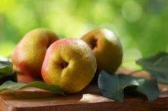 Mogna organiska päron på den lantliga tabellen Royaltyfri Fotografi