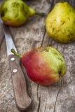 Mogna päron Fotografering för Bildbyråer