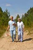 Mogna par i skog Arkivbilder