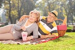 Mogna par som tycker om en picknick i parkera Fotografering för Bildbyråer