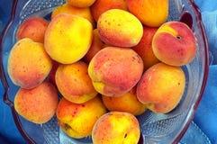 Mogna persikor i en bunke Fotografering för Bildbyråer