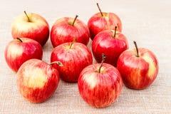 Mogna röd-guling äpplen som ligger på en ljus bakgrund arkivfoton