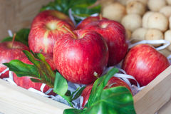 Mogna röda äpplen i den Wood asken Arkivfoton