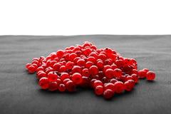 Mogna röda bär som isoleras på en vit bakgrund Saftig vinbär eller tranbär på en grå torkduk Läcker ingrediens Royaltyfri Foto