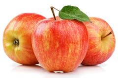 Mogna röda gula äpplen med det gröna bladet som isoleras på vit fotografering för bildbyråer