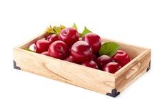 Mogna röda plommoner med sidor i återförsäljnings- magasin royaltyfri foto