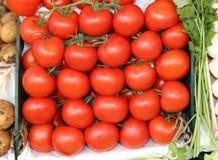 mogna röda tomater som är till salu i frukten och grönsaken, marknadsför Royaltyfri Fotografi