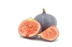 Mogna söta figs Arkivbild