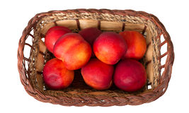 Mogna söta persikor i den vide- korgen som isoleras på vit Royaltyfri Bild