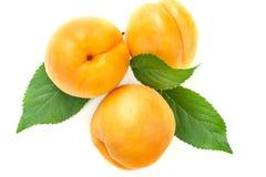 Mogna saftiga gula aprikors med sidor på en vit tabell Arkivbild