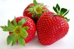 Mogna saftiga och sunda jordgubbar p? en vit bakgrundsn?rbild arkivfoton