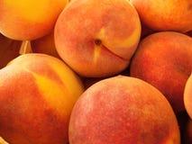 Mogna saftiga organiska persikor Royaltyfri Fotografi